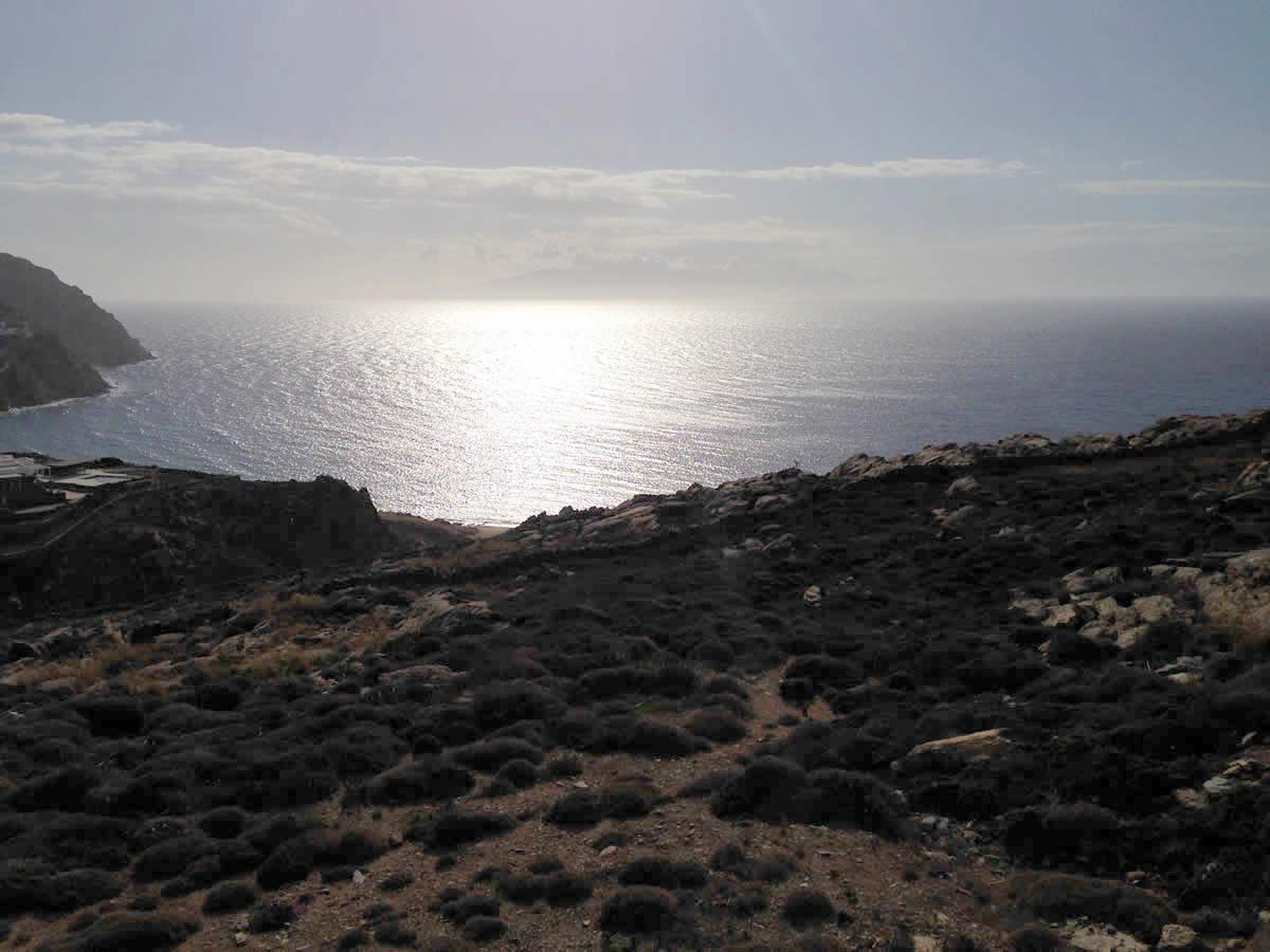 Purchase of an 8 acres plot in Mykonos for the development and construction of 2 luxury houses in Elia area.